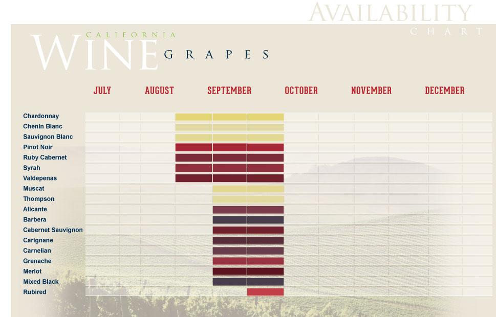 wine grape chart: Top brass wine grapes